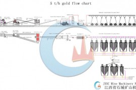 5T/H Rock Gold Processing Plant In Tanzania